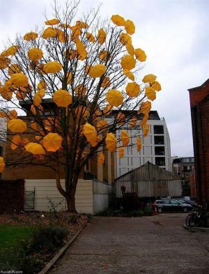 Originální strom 2