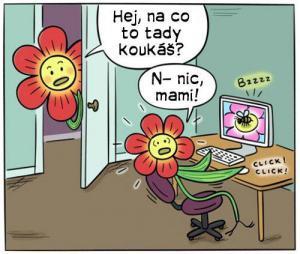 Choulostivý život květin