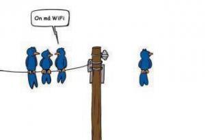 Ptačí perspektiva