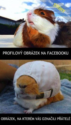 Profilovka na FB vs. fotka, na které tě označí kamarádi