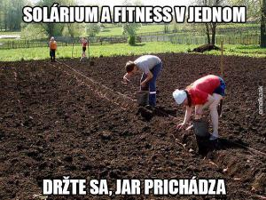 Solarko a fitness