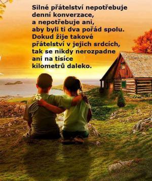 Silné přátelství