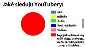 Koho sleduju na Youtube