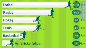 Průměrná uběhnutá vzdálenost v jednotlivých sportech