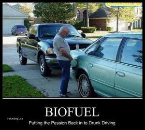 Bio palivo