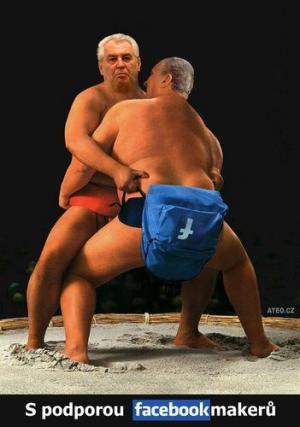 volební sumo