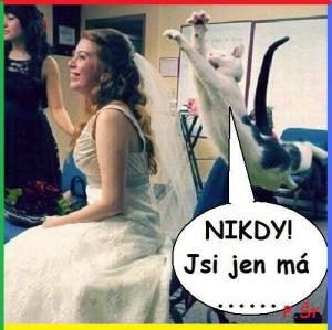 NIKDY