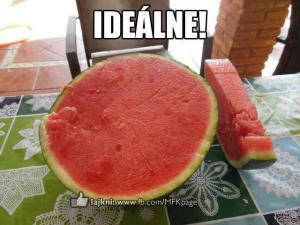 Ideální meloun