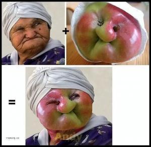 Babča