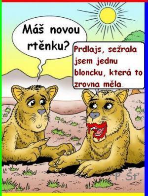 Rtenka