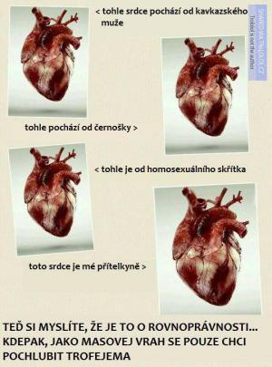 Všechna srdce jsou stejná