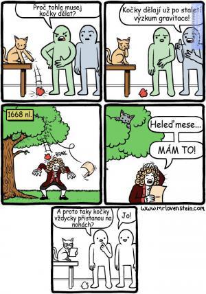 Už víte, proč kočky všechno shazují?