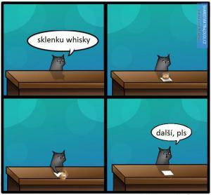 Sklenku whisky