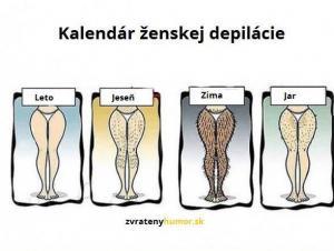 Kalendář ženské depilace
