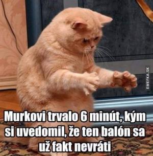 Murko