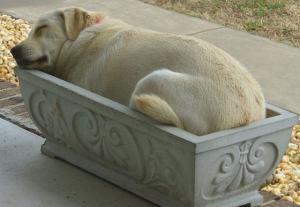 Pohodlný odpočinek