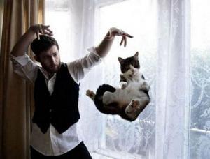 Létající kočka
