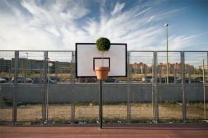 Využití květináče při basketbalu