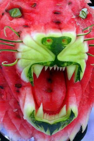 Lev z melounu