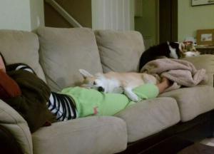Odpočinek se psem