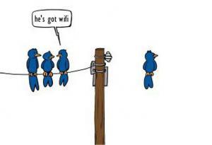 i ptáci už mají wifi