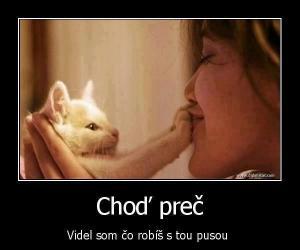 kočka:D