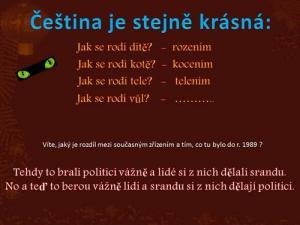 Krásy češtiny