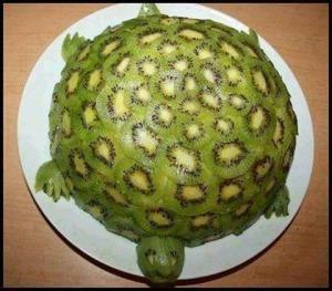 Kiwi želva