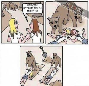 Jak na medvěda