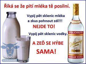 Mlíko vs. Vodka