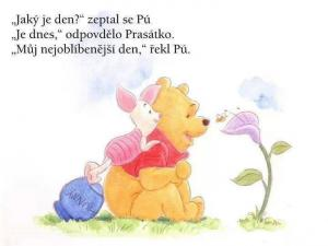 Medvídek Pú :)