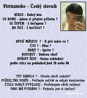 vietnamsko český slovník