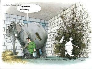 Když slon...