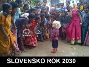 Slovensko rok 2030