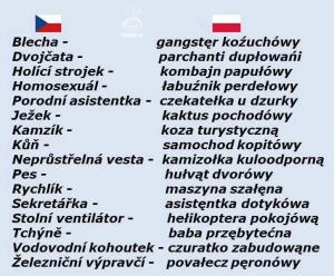 Čeština a Polština