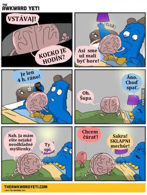 Hádky s mozkem