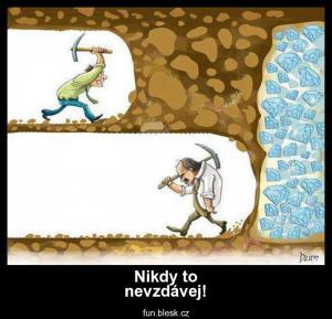 Nikdy to nevzdávej!