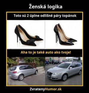 Logika u žen