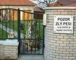 Pozor, na zahradě je zlý pes