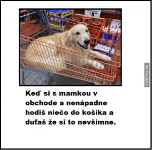 Na nákupu