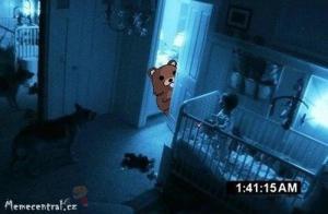 Paranormální méďa