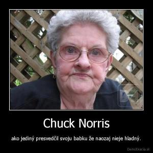 Jedině Chuck Norris