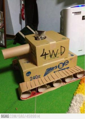 Tank pro kočku