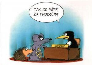 Problém