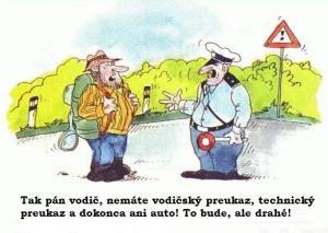 Policajtní logika