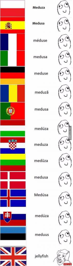 Jazykové rozdíly