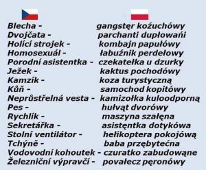 Česko - Polský slovník