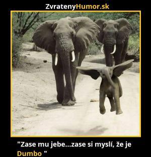 Dumbo:D