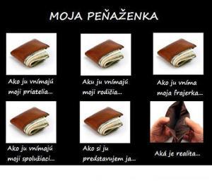 Moje peněženka