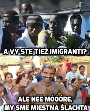 Vy jste také imigranti